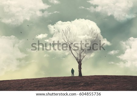 Shutterstock clouds over the tree
