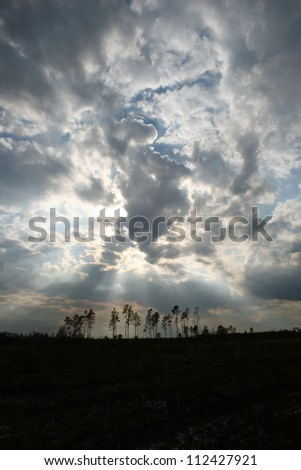 clouds over woods with sun rays