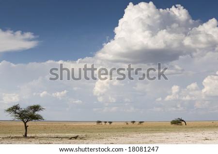 Cloudscape, Etosha National Park, Republic of Namibia, Africa