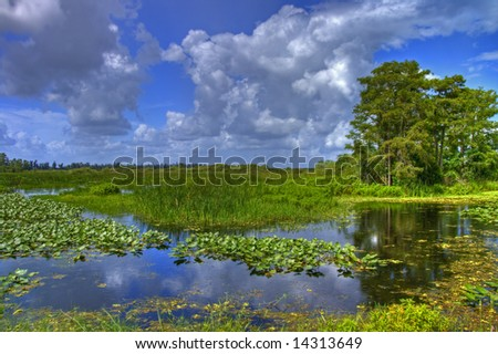Cloudscape landscape in Everglades National Park in July
