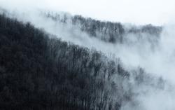 Cloudy Appalachian Mountains