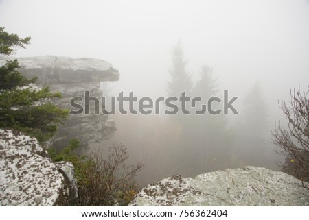Cloudy Day at Dolly Sods Wilderness Area #756362404