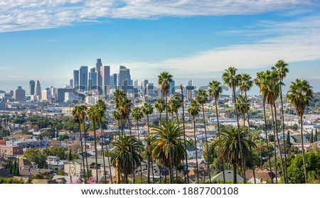 Cloudy day of Los Angeles downtown skyline and palm trees in foreground
