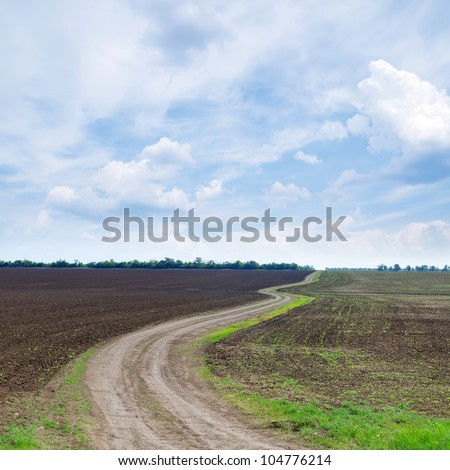 cloudy sky and winding path