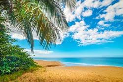 Cloudy sky over beautiful La Perle beach, Gaudeloupe, Lesser Antilles, Caribbean sea