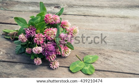 Clover flowers bouquet with leaves on wooden background at sunset light. Romantic scene.  #439210474