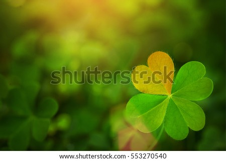 Stock Photo clover leaf in lens flare Pray for Valentine background