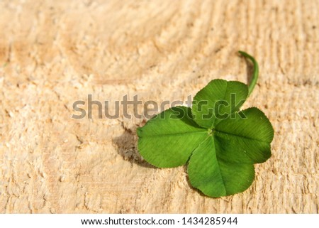 clover leaf with four leaves for good luck #1434285944