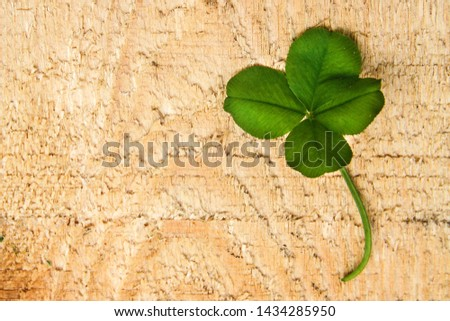 clover leaf with four leaves for good luck #1434285950