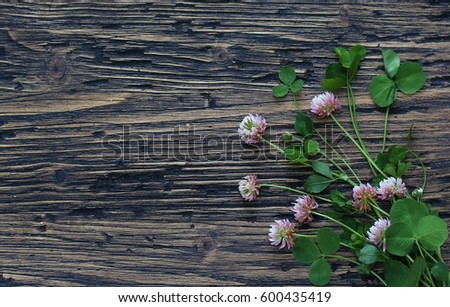 Clover leaves and flowers on the background of an old board. St.Patrick 's Day. #600435419