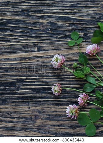 Clover leaves and flowers on the background of an old board. St.Patrick 's Day. #600435440