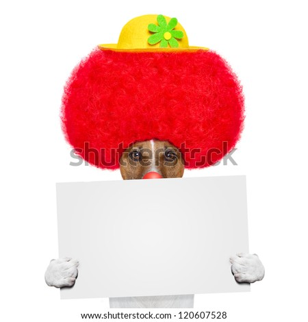 clown dog with red wig and hat holding a banner