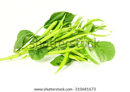 cluster bean or guar been indian vegetable in white background Foto stock ©
