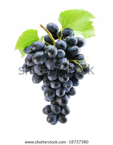 cluster of blue grape isolated on white background