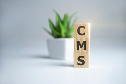 CMS Custom Management System written on a wooden cube on light background