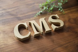 CMS wooden blocks on the table