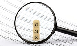 CMS wooden cubes on the chart background , look through a magnifier
