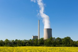 Coal power plant with cooling tower and rapeseed in the foreground