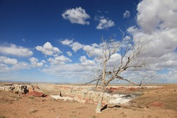 coalmine canyon near grand canyon backcountry