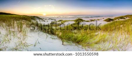 Coast dunes beach sea, panorama #1013550598