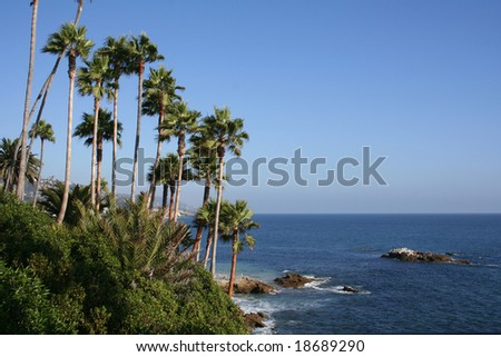 Coast in Laguna Beach, California