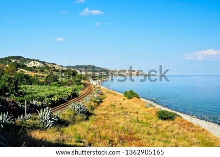 Coast jasmine near Palizzi Marina, District of Reggio Calabria, Calabria, Italy, Europe #1362905165