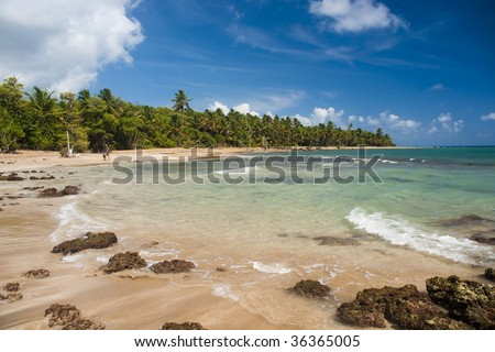 Coast of Atlantic ocean in Puerto Rico