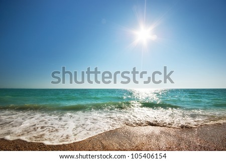 Coast of beach at day. Nature composition