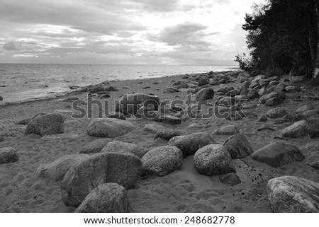 Coast of the Baltic Sea, Russia. Black and white.