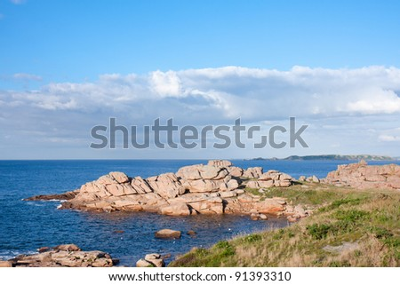 Coast with famous pink granite rocks in Brittany, France #91393310