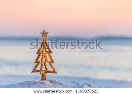 Photo of  Coastal Christmas.  A Christmas tree with pretty fairy lights on the beach in Australia with soft background blur suitable for message