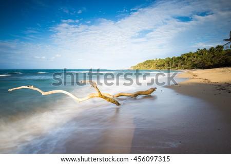 Shutterstock Coastal Dominican Republic beach
