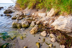 Coastal erosion of the cliffs is created by wind and rain erosion.