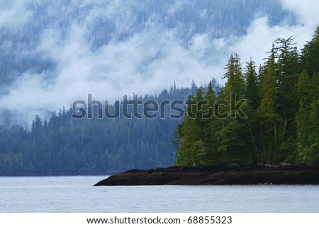 Coastal inlets and dense forests of the Misty Fjords National Monument
