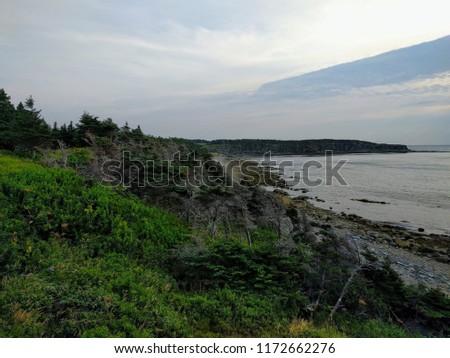 Coastal Newfoundland Landscape #1172662276