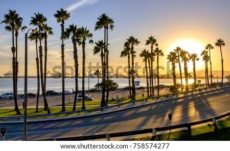 Coastal road sunset in Long Beach, California.