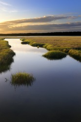 Coastal Salt Marsh at Sunrise