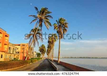 Coastal street with high palm trees during sunset in Saint-Louis, Senegal