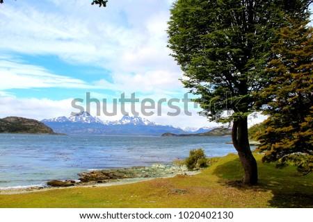 Shutterstock Coastal Trail in Tierra del Fuego National Park - Ushuaia - Argentina