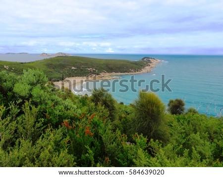 Coastline Wilsons Promontory National Park Australia #584639020