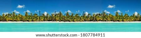 Coastline with coconut palm tree jungle on caribbean beach,  Island Saona. Dominican Republic. Travel destinations. Summer vacations Foto stock ©