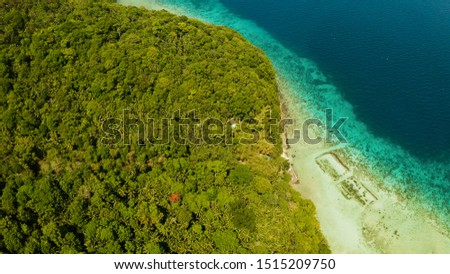 Coastline with forest and palm trees, coral reef with turquoise water, aerial view. Sea water surface in lagoon and coral reef. Seascape of tropical island covered wgreen forest Camiguin, Philippines #1515209750