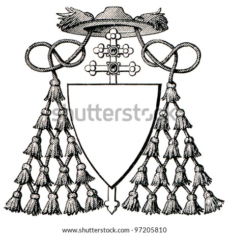 role and symbolism of the cardinal in the roman catholic church In christian traditions ranging from roman catholic to lutheran, bishops play an important role in church oversight in many orthodox and catholic churches, bishops are believed to be the successors to the original twelve apostles from the bible's new testament.