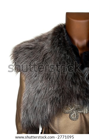 Coat with a fur collar on a white background