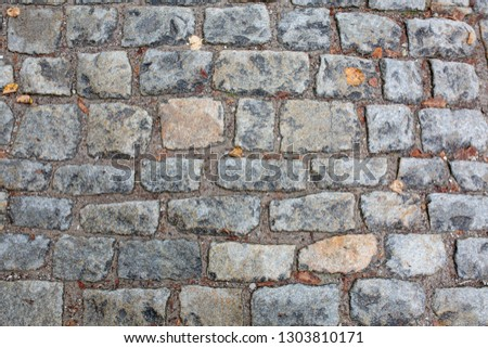 Cobbled stone sidewalk after the rain in historical center in Prague. Closeup shot