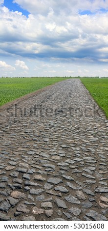 cobblestone pavement among green meadow