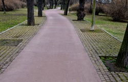 cobblestone paving in the alley between the trees with larger spacing between the tiles acts as an infiltration area for rainwater stone granite gray. bent, curved pathway, granitr curbs  in spring