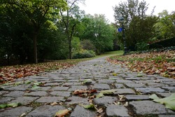 Cobblestone road in the park in autumn with colourful leaves on the ground and green trees in background