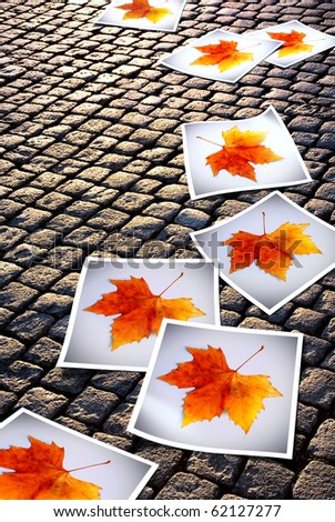 Cobblestone road with fallen photo prints of Autumn leaves