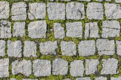 Cobblestone texture with grass growth between blocks